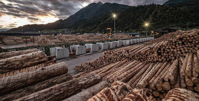 Troger-Holz